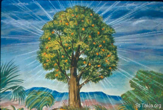 St-Takla.org Image: The tree of life (Genesis 2:9) ���� �� ���� ������ ����: ���� ������ (����� 2: 9)