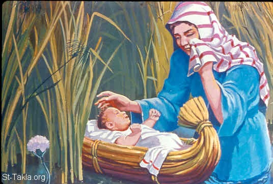 St-Takla.org Image: Moses is put the ark of bulrushes, and is laid in the reeds by the river's bank (Exodus 2:3) صورة في موقع الأنبا تكلا: موسى يوضع في السبت وسط حشائش الماء (خروج 2: 3)