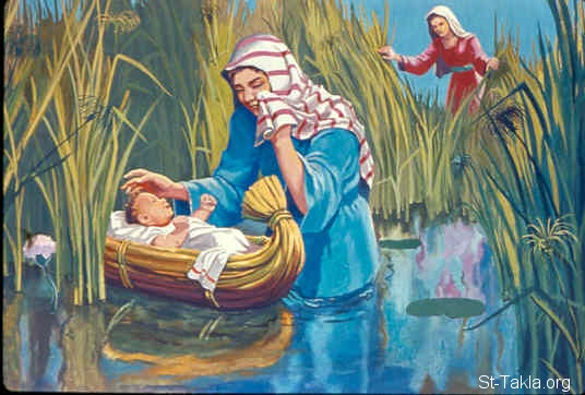 St-Takla.org Image: Moses' sister stood afar off, to know what would be done to him (Exodus 2:4) ���� �� ���� ������ ����: ��� ���� ����� ����� �� ����� (���� 2: 4)