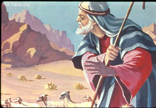 St-Takla.org Image: Moses was tending the flock of Jethro his father-in-law, the priest of Midian (Exodus 3:1) صورة في موقع الأنبا تكلا: موسى يرعى غنم يثرون (خروج 3: 1)