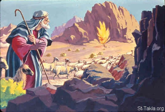 St-Takla.org Image: Moses came to Horeb, the mountain of God, and saw the flame of fire from the midst of a bush (Exodus 3:2, 3) صورة في موقع الأنبا تكلا: موسى يشاهد عليقة تشتعل (خروج 3: 2، 3)