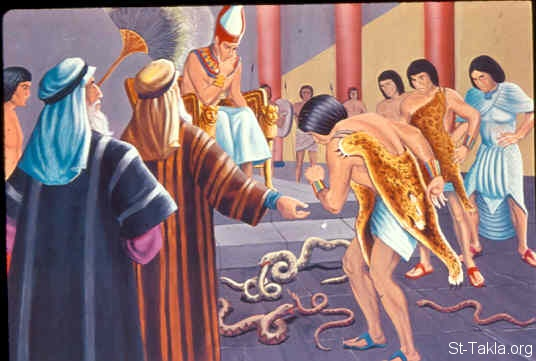 St-Takla.org Image: The rods became serpents (Exodus 7:7, 11) ���� �� ���� ������ ����: ����� ����� ��� ���� (���� 7: 7� 11)