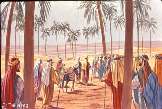 St-Takla.org Image: Then they came to Elim, where there were twelve wells of water and seventy palm trees; so they camped there by the waters (Exodus 15:27) صورة في موقع الأنبا تكلا: اثنتا عشر عين ماء وسبعون نخلة في ايليم (خروج 15: 27)