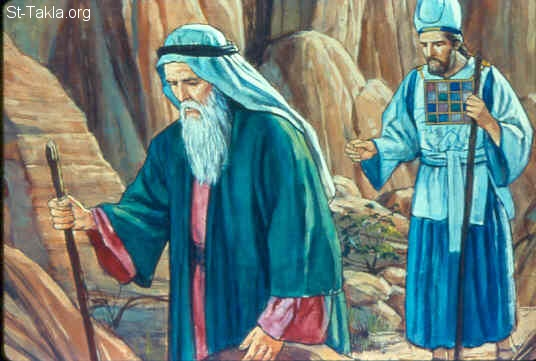 St-Takla.org Image: Moses stripped Aaron of his garments and put them on Eleazar his son; and Aaron died there on the top of the mountain. Then Moses and Eleazar came down from the mountain (Numbers 20:28-29) صورة في موقع الأنبا تكلا: موت هارون واليعازر ابنه يصبح بدلا منه كاهن (العدد 20: 28-29)