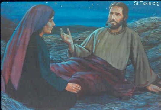 فبسطت ذيلي عليك كتاب راعوث الموآبية St Takla Org