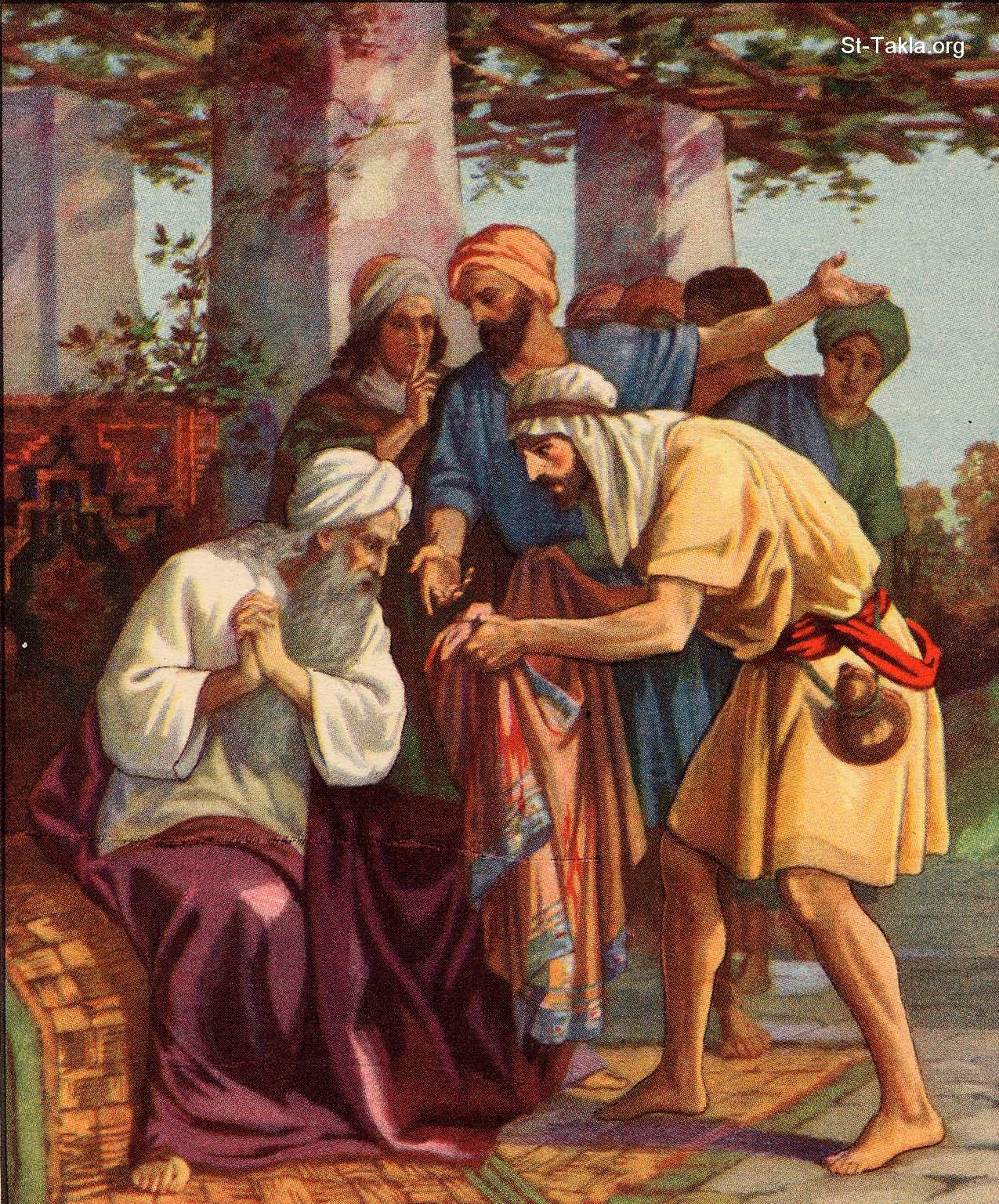 картинка иосифа и его братьев одно