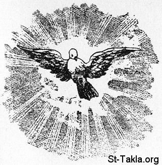 St-Takla.org Image: The Spirit of God descended like a dove ���� �� ���� ������ ����: ����� ����� ��� �� ��� �����