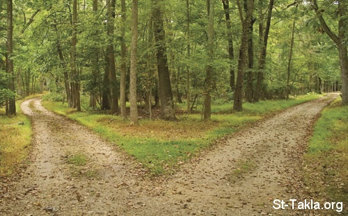 St-Takla.org Image: Two roads, choose one! ���� �� ���� ������ ����: ������ ����� �� ����� ������
