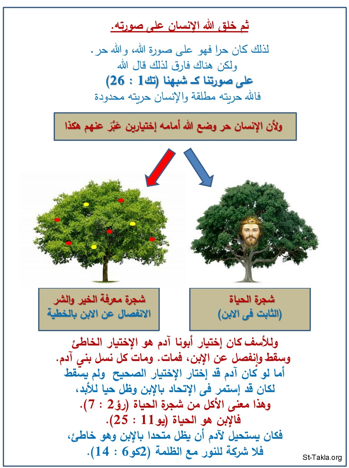 St-Takla.org Image: Man's creation, and tree choices: graph ���� �� ���� ������ ����: ���� ������� ����� ����� - ��� �����