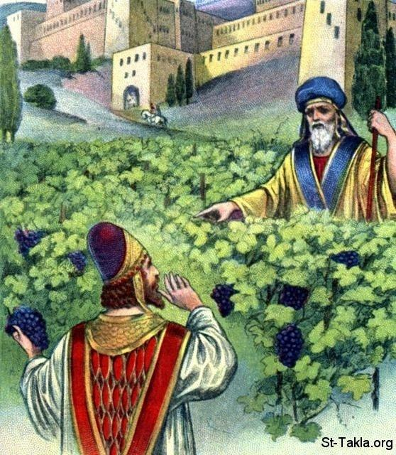 St-Takla.org         Image: Ahab asking Naboth the Jezreelite to give him his vineyard ����: ����� ���� ��� ������ ���� �� ����� ��������� �� ����� �����