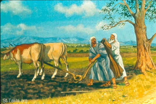 St-Takla.org Image: So he departed from there, and found Elisha the son of Shaphat, who was plowing with twelve yoke of oxen before him, and he was with the twelfth. Then Elijah passed by him and threw his mantle on him (1 Kings 19:19) صورة في موقع الأنبا تكلا: إيليا يطرح رداءه على أليشع وهو في الحقل (ملوك الأول 19: 19)