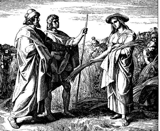 St-Takla.org Image: Ruth Meets Boaz - Ruth gleaning in the field of Boaz: Ruth 2:5  ���� �� ���� ������ ����: ����� ����� ����: ����� ����� �� �����: �� 2: 5