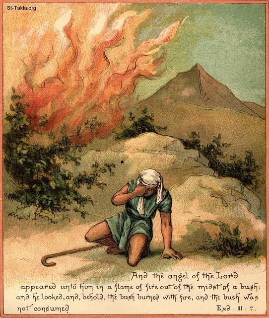 St-Takla.org Image: The burning bush: And the angel of the LORD appeared unto him in a flame of fire out of the midst of a bush: and he looked, and, behold, the bush burned with fire, and the bush was not consumed. (Exodus 3: 2) ���� �� ���� ������ ����: ������� ��������: ���� �� ���� ���� ����� ��� �� ��� �����. ���� ���� ������� ����� �����ѡ �������� �� ��� ����� (���� 3: 2)