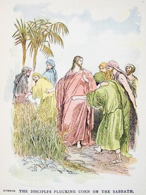 Image: The disciples plucking corn on the Sabbath
