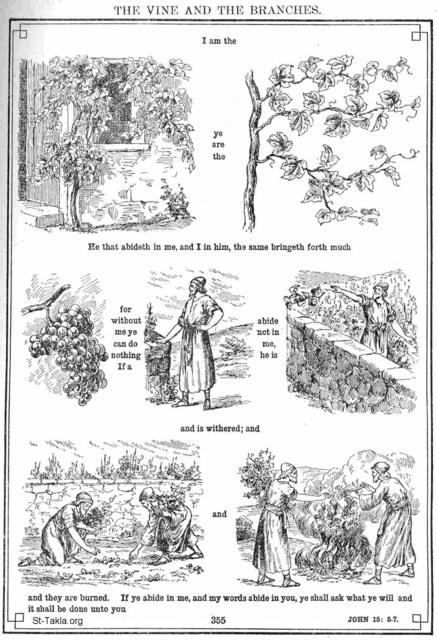 Image: Bible 43Jhn15 05 07 The Vine and the Branches