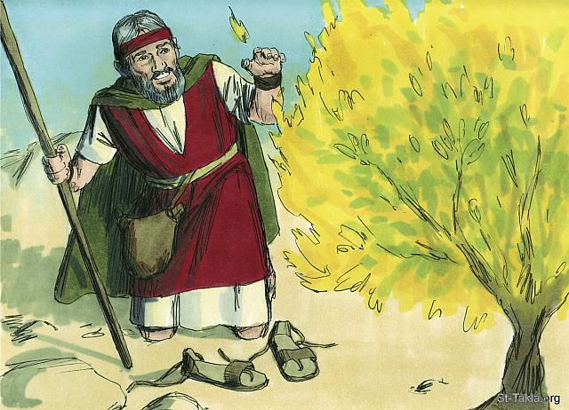 "St-Takla.org Image: God told Moses to take off his shoes for he was on holy ground. 'I am the God of Abraham, Isaac and Jacob,' God announced. At this, Moses hid his face for he was afraid to look at God. (Exodus 3: 5-6) - ""Moses and the burning bush"" images set (Exodus 3 - 4): image (4) - Exodus, Bible illustrations by James Padgett (1931-2009), published by Sweet Media صورة في موقع الأنبا تكلا: ""فقال: «لا تقترب إلى ههنا. اخلع حذاءك من رجليك، لأن الموضع الذي أنت واقف عليه أرض مقدسة». ثم قال: «أنا إله أبيك، إله إبراهيم وإله إسحاق وإله يعقوب». فغطى موسى وجهه لأنه خاف أن ينظر إلى الله"" (الخروج 3: 5-6) - مجموعة ""موسى والعليقة المشتعلة"" (الخروج 3-4) - صورة (4) - صور سفر الخروج، رسم جيمز بادجيت (1931-2009)، إصدار شركة سويت ميديا"