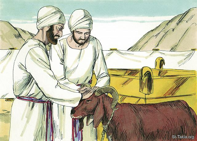 "St-Takla.org Image: ""You shall also have the bull brought before the tabernacle of meeting, and Aaron and his sons shall put their hands on the head of the bull"" (Exodus 29: 10) - Exodus, Bible illustrations by James Padgett (1931-2009), published by Sweet Media صورة في موقع الأنبا تكلا: ""وتقدم الثور إلى قدام خيمة الاجتماع، فيضع هارون وبنوه أيديهم على رأس الثور"" (الخروج 29: 10) - صور سفر الخروج، رسم جيمز بادجيت (1931-2009)، إصدار شركة سويت ميديا"