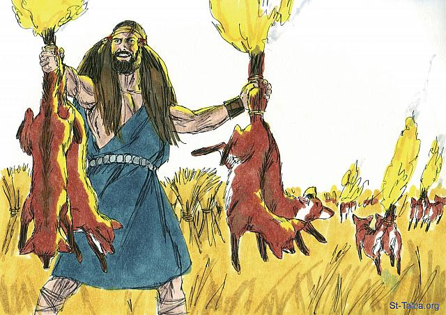 "St-Takla.org Image: Samson went out and caught 300 foxes. He tied their tails together in pairs, and fastened a torch to each pair of tails. Then he lit the torches and let the foxes run through the grain fields of the Philistines. (Judges 15: 4-5) - ""Samson attacks the Philistines"" images set (Judges 15: 1-20): image (2) - Judges, Bible illustrations by James Padgett (1931-2009), published by Sweet Media صورة في موقع الأنبا تكلا: ""وذهب شمشون وأمسك ثلاث مئة ابن آوى، وأخذ مشاعل وجعل ذنبا إلى ذنب، ووضع مشعلا بين كل ذنبين في الوسط، ثم أضرم المشاعل نارا وأطلقها بين زروع الفلسطينيين"" (القضاة 15: 4-5) - مجموعة ""شمشون يهجم على الفلسطينيين"" (القضاة 15: 1-20) - صورة (2) - صور سفر القضاة، رسم جيمز بادجيت (1931-2009)، إصدار شركة سويت ميديا"