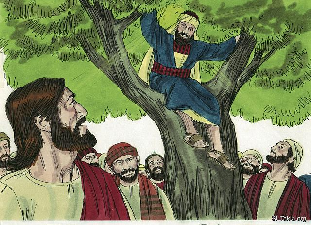 "St-Takla.org Image: When Jesus got to the tree, He looked up and said, 'Zacchaeus, hurry down. Today is my day to be a guest in your home.' (Luke 19: 5) - ""Zacchaeus the Tax Collector"" images set (Luke 19:1-10): image (5) - The Gospels, Bible illustrations by James Padgett (1931-2009), published by Sweet Media صورة في موقع الأنبا تكلا: ""فلما جاء يسوع إلى المكان، نظر إلى فوق فرآه، وقال له: «يا زكا، أسرع وانزل، لأنه ينبغي أن أمكث اليوم في بيتك»"" (لوقا 19: 5) - مجموعة ""زكا العشار"" (لوقا 19: 1-10) - صورة (5) - صور الأناجيل الأربعة، رسم جيمز بادجيت (1931-2009)، إصدار شركة سويت ميديا"