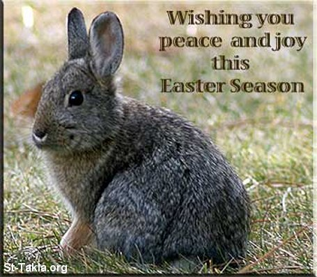 Image: Easter Card 08