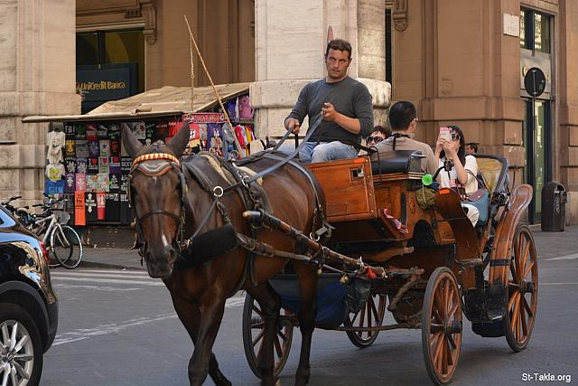 St-Takla.org Image: A horse with a bridle being driven by man who shows tourists around in his carriage - Various photos from Florence (Firenze), Italy - Photograph by Michael Ghaly for St-Takla.org, September 29, 2014 صورة في موقع الأنبا تكلا: رجل يسوق حصانًا بلجام في عربة للسياح - صور متنوعة من فلورنسا (فيرينزي)، إيطاليا - تصوير مايكل غالي لموقع الأنبا تكلاهيمانوت، 29 سبتمبر 2014