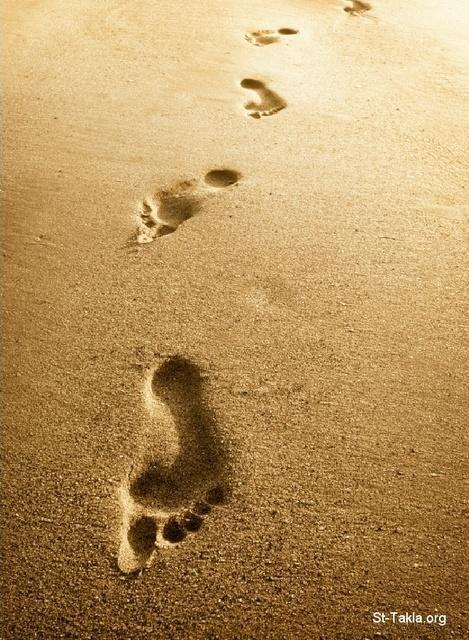 فلاش آثار الأقدام