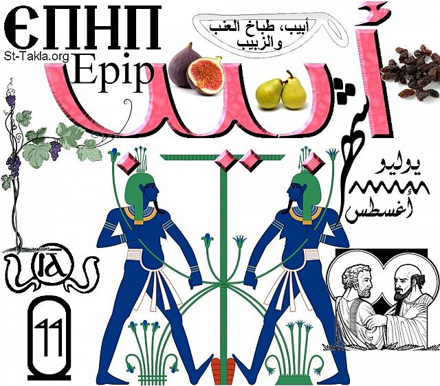 "St-Takla.org Image: Month of Abib, the eleventh Coptic month in the Egyptian Coptic Calendar. The word is written in Arabic, English and Coptic, with images and figures representing this month. One of this month's famous sayings: ""Abib, the cook of grapes and raisin"". The name of the month comes from ""Abibi"" God of the Nile, and you can see his image. In the cartouche there is the number of the month (11), and in the circle that is surrounded by serpents there is the number in Coptic. Shown also the image of Sts. Peter and Paul (events of the month). It lies between July and August. Finally there are images of some of the plants of this month, like: fig - pear - grape - raisin. (Designed by Michael Ghaly for St-Takla.org) صورة في موقع الأنبا تكلا: كلمة شهر أبيب، وهو الشهر القبطي الحادي عشر من الشهور القبطية المصرية. والكلمة مكتوبة باللغات العربية والإنجليزية والقبطية، مع صور وأشكال تعبر عن الشهر. فيوجد من الأمثال الشعبية لهذا الشهر: ""أبيب طباخ العنب والزبيب""، أي موسم هذا النبات ومشتقاته. واسم الشهر مشتق من الإله ""أبيبي"" إله النيل، ويوجد صورته. وفي الخرطوش يوجد رقم الشهر (11)، وفي الدائرة المحاطة بالثعابين يوجد رقم الشهر بالقبطية. ويوجد صورة الشهيدان بطرس وبولس من أحداث الشهر. وهو يقع ما بين شهري يوليو وأغسطس. وأخيرًا يوجد بعض نباتات هذا الشهر مثل التين - الكمثرى - العنب - الزبيب. - تصميم مايكل غالي لـ: موقع الأنبا تكلا هيمانوت"