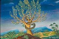Image: The tree of the knowledge of good and evil<br>صورة شجرة معرفة الخير والشر