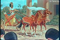Image: Pharaoh had Joseph ride in the second chariot which he had<br>صورة يوسف يركب مركبة فرعون