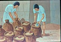 Image: The steward of his house filling the Joseph's brother's sacks with food<br>صورة رئيس خدم يوسف يملأ الأوعية طعاما