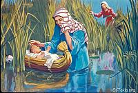 Image: Moses' sister stood afar off, to know what would be done to him<br>صورة أخت موسى تراقب السبت في الماء