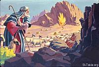 Image: Moses came to Horeb, the mountain of God, and saw the flame of fire from the midst of a bush<br>صورة موسى يشاهد عليقة تشتعل