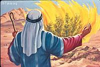 Image: Moses telling God: O my Lord, I am not eloquent<br>صورة موسى يقول لله: لست أنا صاحب كلام