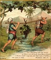 Image: spies bring grapes from canaan