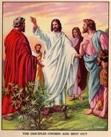 Image: 48 Jesus teaches his disciples 3