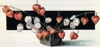 Image: 49 Chinese lanterns and money plant