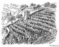 Image: Bible 40Mat20 08 13 The Laborers in the Vineyard