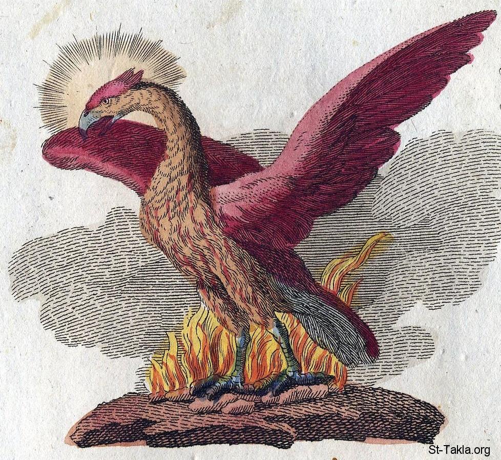 طائر العنقاء الفينكس كتابات لاكتانتيوس