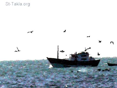 St-Takla.org Image: A fishing boat, and birds flying around it ���� �� ���� ������ ����: ���� ��ϡ ����� ���� ����