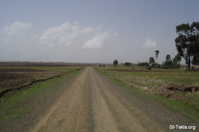 St-Takla.org Image: Long road, nothing ahead, photo from St-Takla.org's Journey to Ethiopia, 2008 ���� �� ���� ������ ����: ���� ���� �� ��� �� ����ޡ ���� �� ��� ���� ���� ������ ����������� ��� ������� ��� 2008