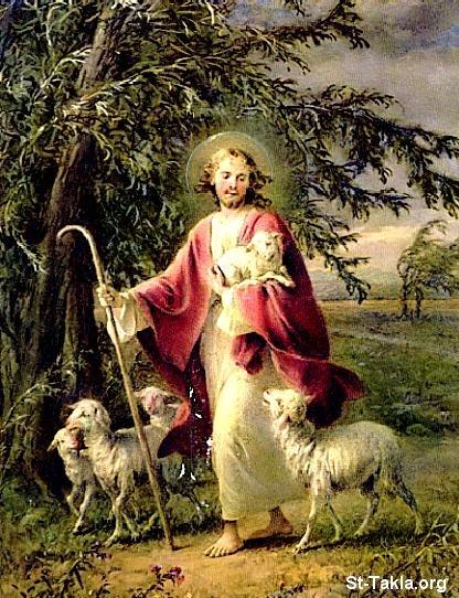 St-Takla.org             image:  Jesus the good shepherd   صورة يسوع راعي صالح