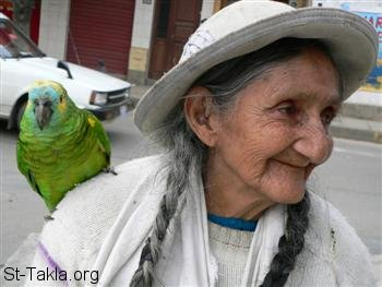 St-Takla.org Image: An old woman with a parrot صورة في موقع الأنبا تكلا: إمرأة عجوز مع طائر ببغاء